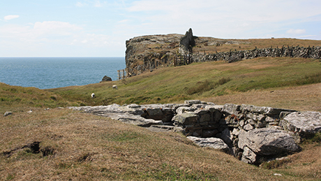 Rhoscolyn, Anglesey - Dog Walks Near Me