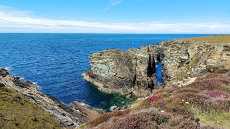 The Range, Holy Island, Anglesey, North Wales - Dog Walks Near Me