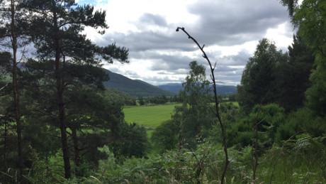 Cambus o'May, Cairngorms National Park - Dog Walks Near Me