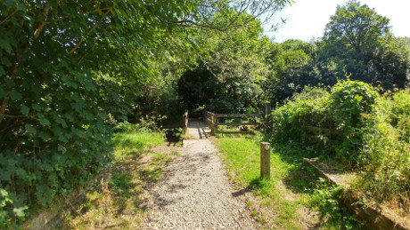 The Loe, Cornwall - Dog Walks Near Me