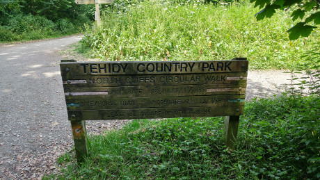 Tehidy Country Park, Cornwall - Dog Walks Near Me