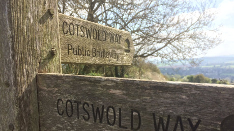 Cotswold Way from Fish Hill, Cotswolds - Dog Walks Near Me