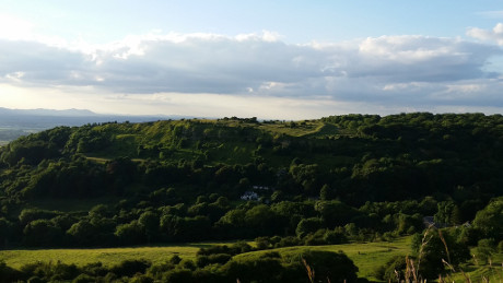 Crickley Hill Country Park, Cotswolds - Dog Walks Near Me
