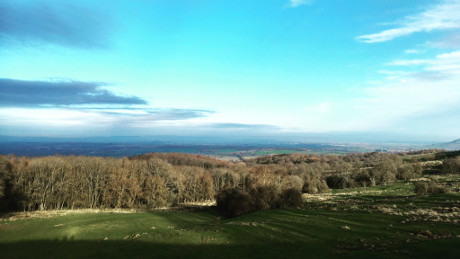 Dover's Hill, Cotswolds - Dog Walks Near Me