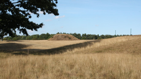 Sutton Hoo, Suffolk - Dog Walks Near Me