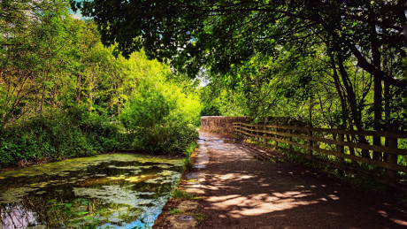 Daisy Nook Country Park, Failsworth, Greater Manchester - Dog Walks Near Me