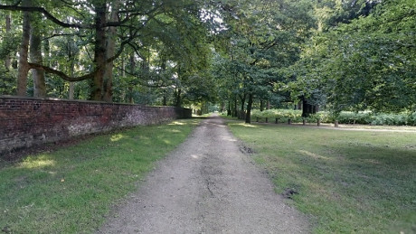 Dunham Massey - Dog Walks Near Me