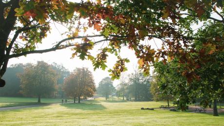 Heaton Park, Greater Manchester - Dog Walks Near Me