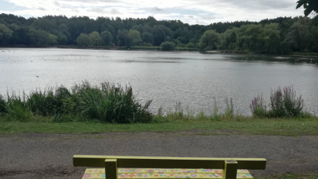 Moses Gate Country Park, Bolton, Greater Manchester - Dog Walks Near Me