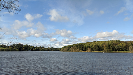 Thornton Reservoir, Leicestershire - Dog Walks Near Me