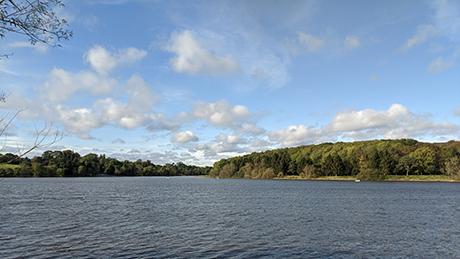 Thornton Reservoir, Leicestershire - Dog Walks Near Me