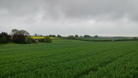 Ludford, Lincolnshire Wolds - Dog Walks Near Me
