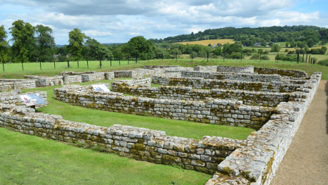 Chesters Roman Fort, Hadrian's Wall, Northumberland - Dog Walks Near Me