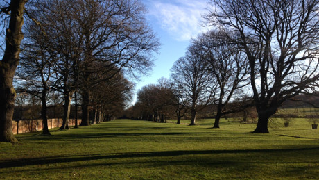 Gibside, Tyne & Wear - Dog Walks Near Me