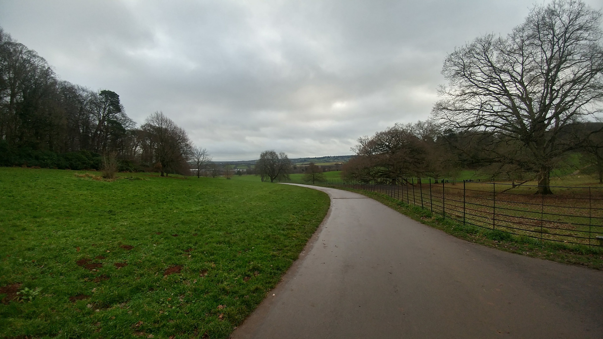 Ashton Court - Dog Walks Near Me
