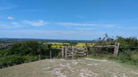 Barton Hills Nature Reserve, Bedfordshire - Dog Walks Near Me