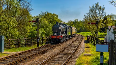 Standen to Kingscote Bluebell Railway, West Sussex - Dog Walks Near Me