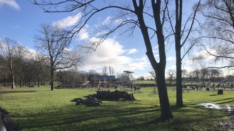 Cassiobury Park and the Grand Union Canal, Watford, Hertfordshire - Dog Walks Near Me