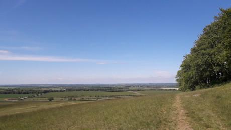 Therfield Heath, Hertfordshire - Dog Walks Near Me