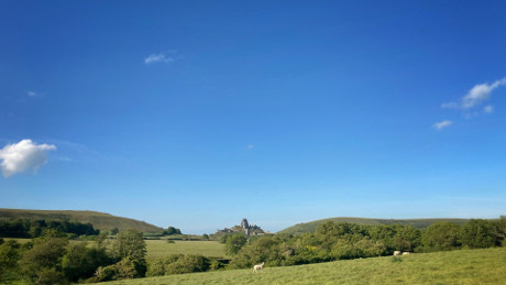 Corfe Castle, Dorset - Dog Walks Near Me
