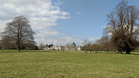 Shugborough Estate - Dog Walks Near Me