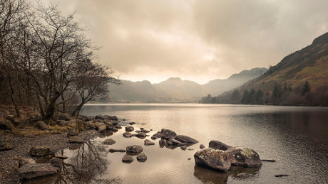 Llyn Crafnant, Snowdonia National Park - Dog Walks Near Me