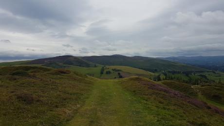 Penycloddiau, Flintshire - Dog Walks Near Me