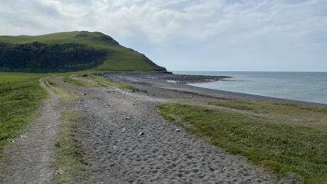 Tanybwlch Beach, Aberystwyth - Dog Walks Near Me