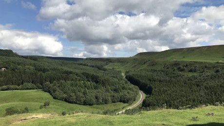 Newtondale, North York Moors National Park - Dog Walks Near Me