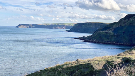 Staithes & Port Mulgrave, North Yorkshire - Dog Walks Near Me