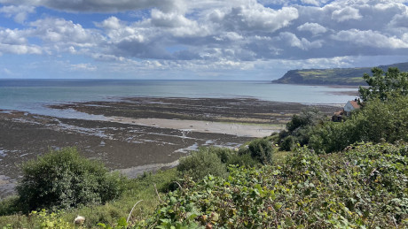 Robin Hood's Bay, North Yorkshire - Dog Walks Near Me