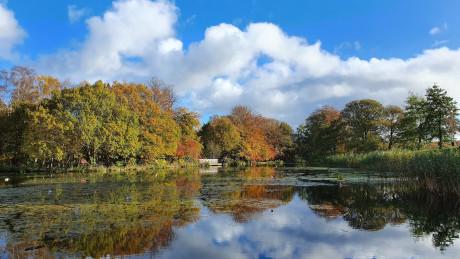 Roundhay Park, Leeds, West Yorkshire - Dog Walks Near Me